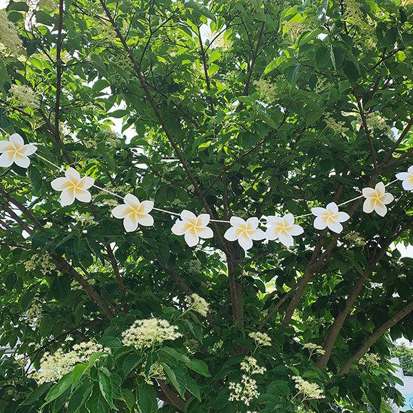 プルメリア ガーランド 飾り付け 誕生日 ハーフ バースデー ウェディング キャンプ 屋外 夏 サマー ハワイアン